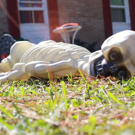 halloween, holiday, skeleton, Canon EOS 60D