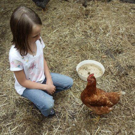 chicken, girl, healthy, Sony DSC-W370