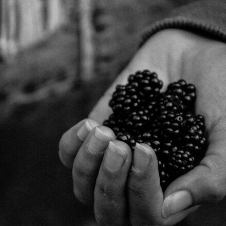 black, and, white, blueberries, Nikon D7100