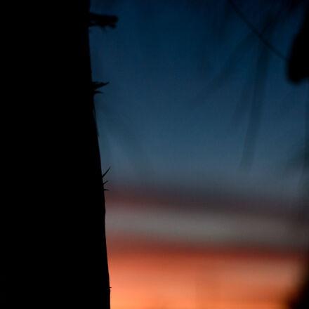 sunset, theme, light, throns, Nikon D7100