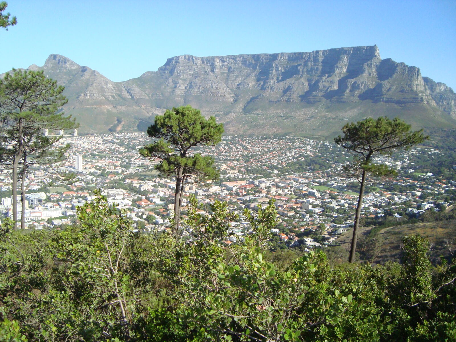 cape, town, city, mountain