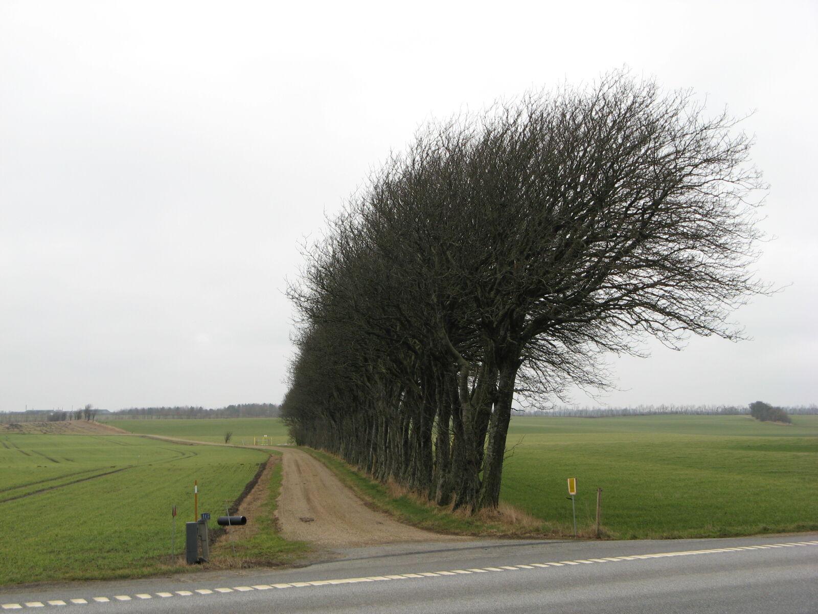 agriculture, asphalt, countryside, empty