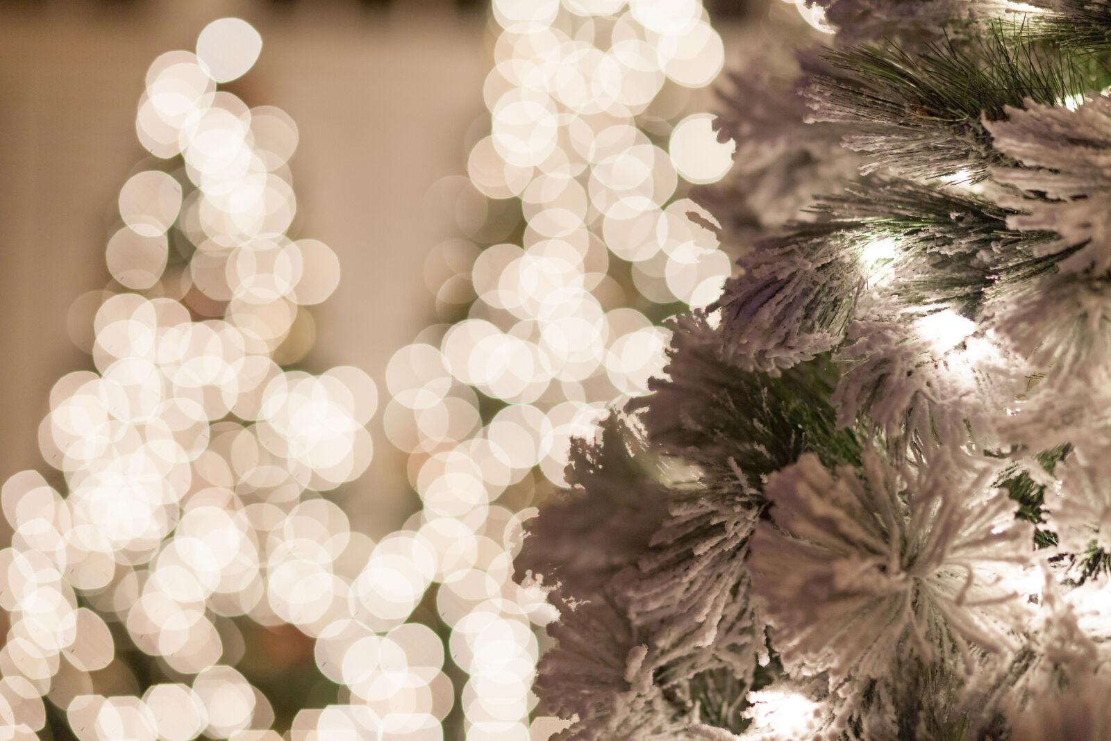 boken, holiday, lights, snow