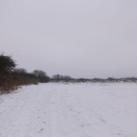 cold, field, grey, sky, Fujifilm FinePix AX550
