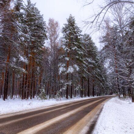 winter, road, forest, Pentax K-500