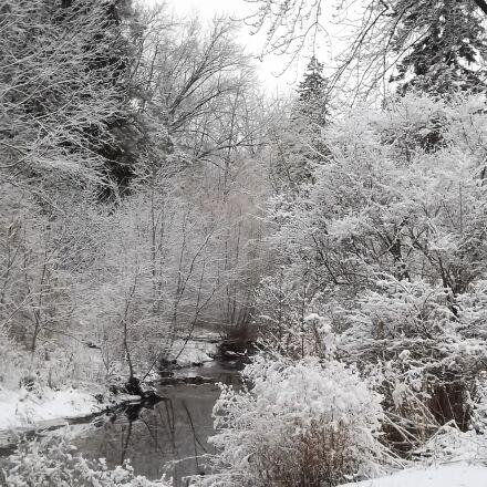 winter, view, snow, Fujifilm FinePix S3400