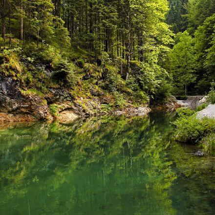 landscape, trees, green, Canon EOS 550D