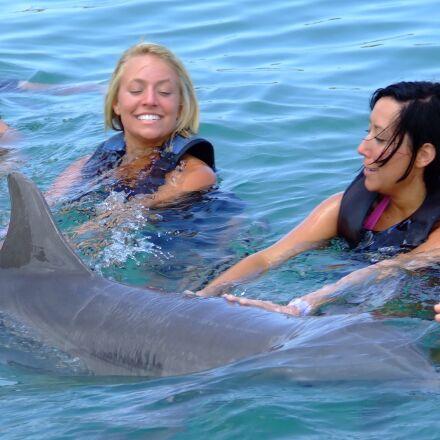 dolphin, sea, nature, Fujifilm FinePix S5200