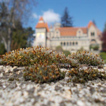 bory-city, castle, building, Nikon COOLPIX L29