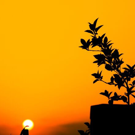 red, sky, sunset, Canon EOS 750D