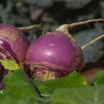 turnips, vegetables, soup, Pentax K10D