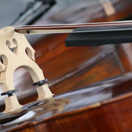 violin, Canon EOS 5D