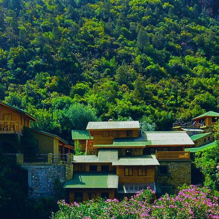 brown, and, green, house, Nikon 1 V2