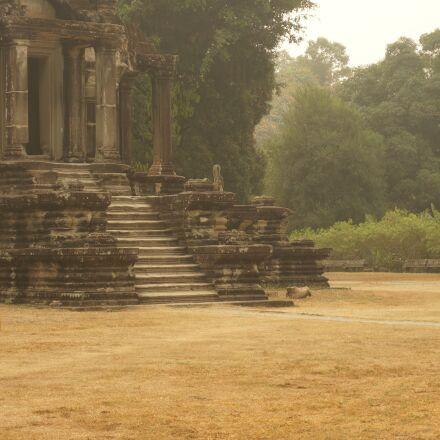 cambodia, monk, orange, Sony NEX-6