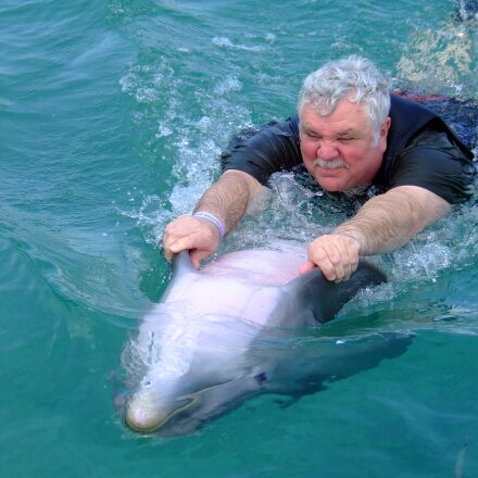 dolphin, water, sea, Fujifilm FinePix S5200