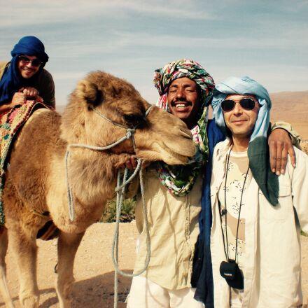 camel, portrait, desert, Nikon COOLPIX S210