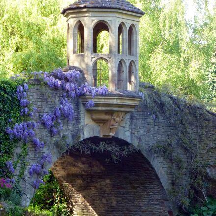 bridge, garden, wisteria, Panasonic DMC-TZ30