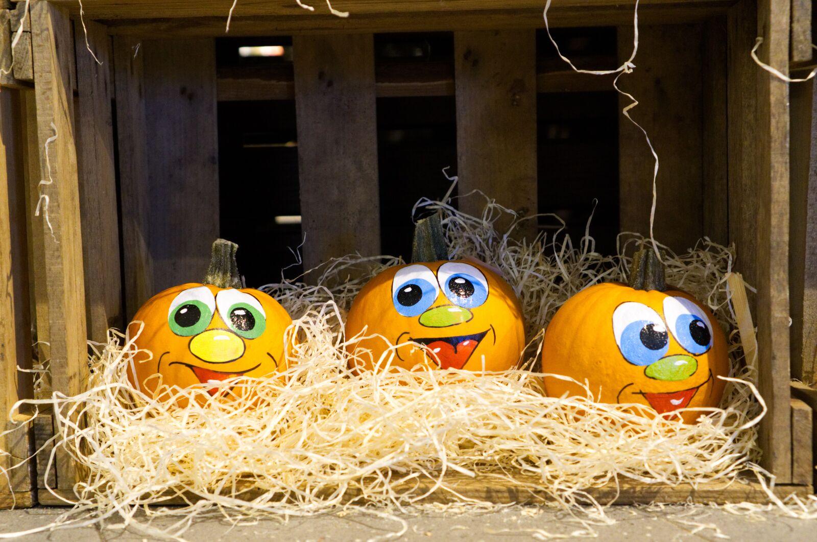 "Sony a6000 sample photo. ""Pumpkin, halloween, autumn"" photography"