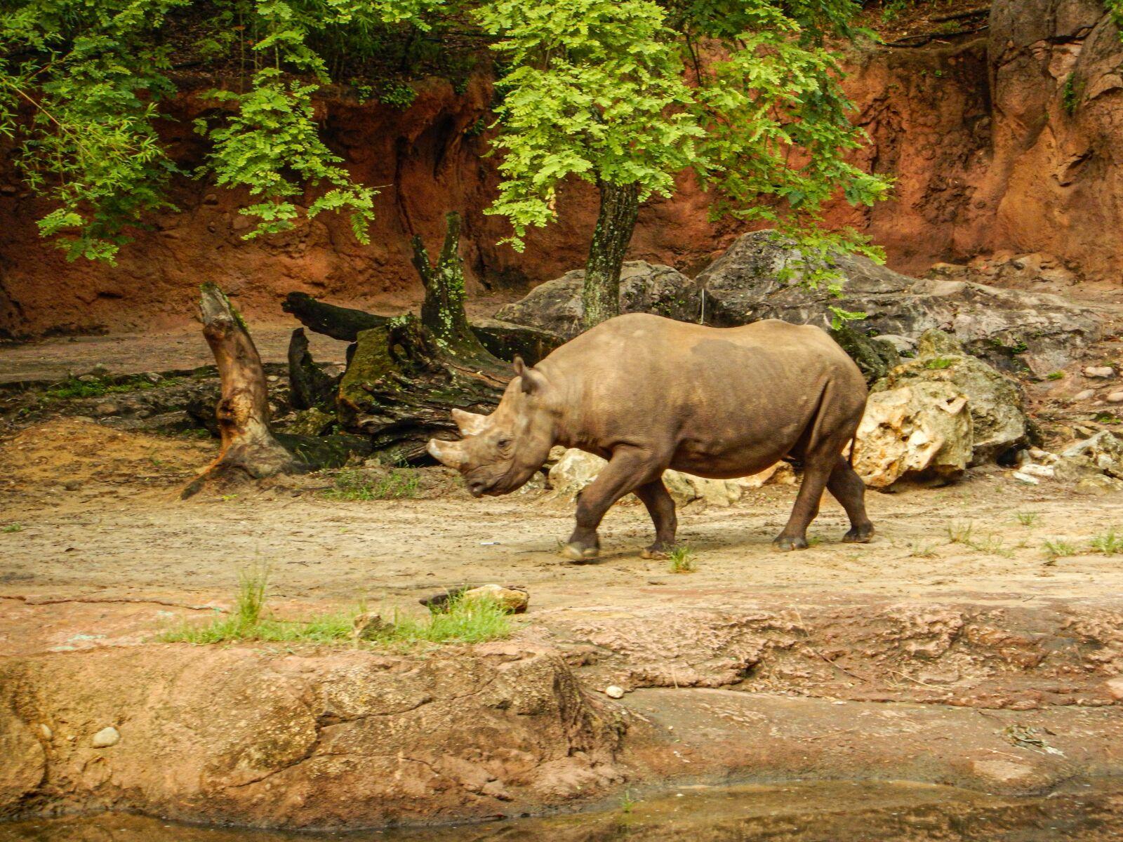 "Nikon Coolpix AW120 sample photo. ""Zoo, nature, park"" photography"