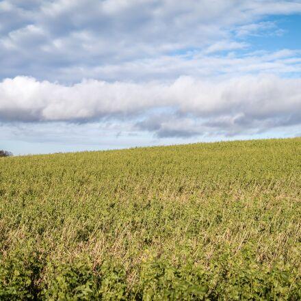 field, arable, clouds, Samsung NX300M