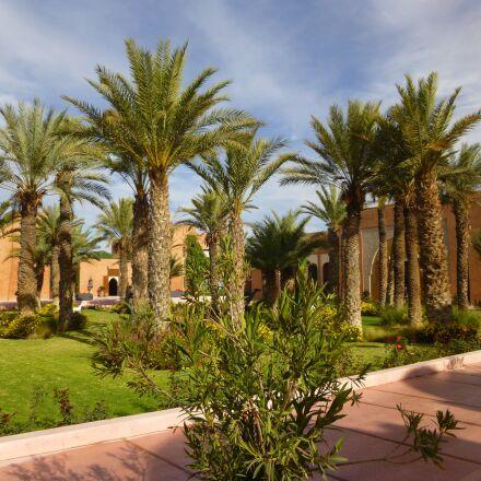 garden, marrackech, morocco, Panasonic DMC-SZ7