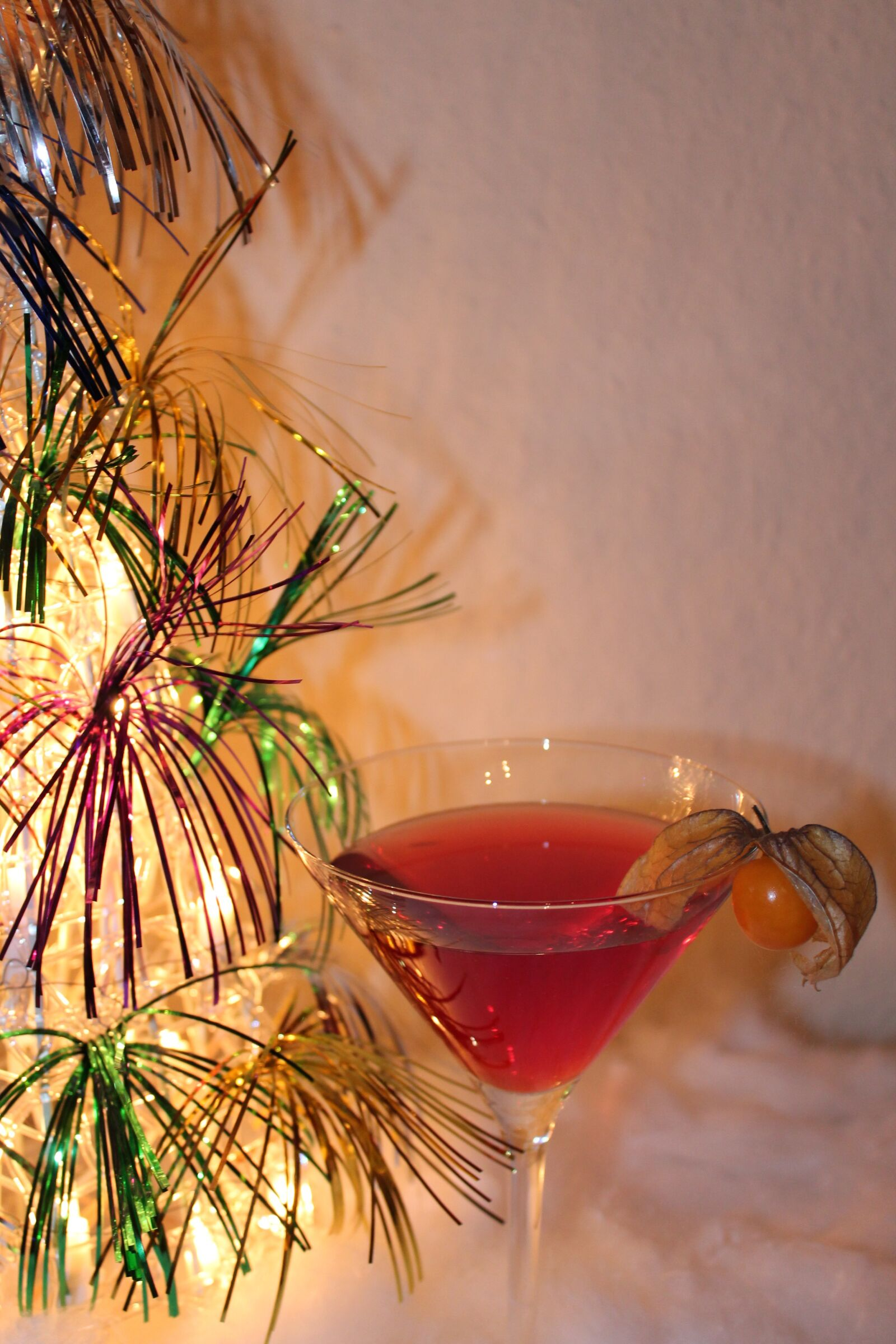 "Canon EOS 1100D (EOS Rebel T3 / EOS Kiss X50) sample photo. ""Cocktail, christmas, contemplative"" photography"