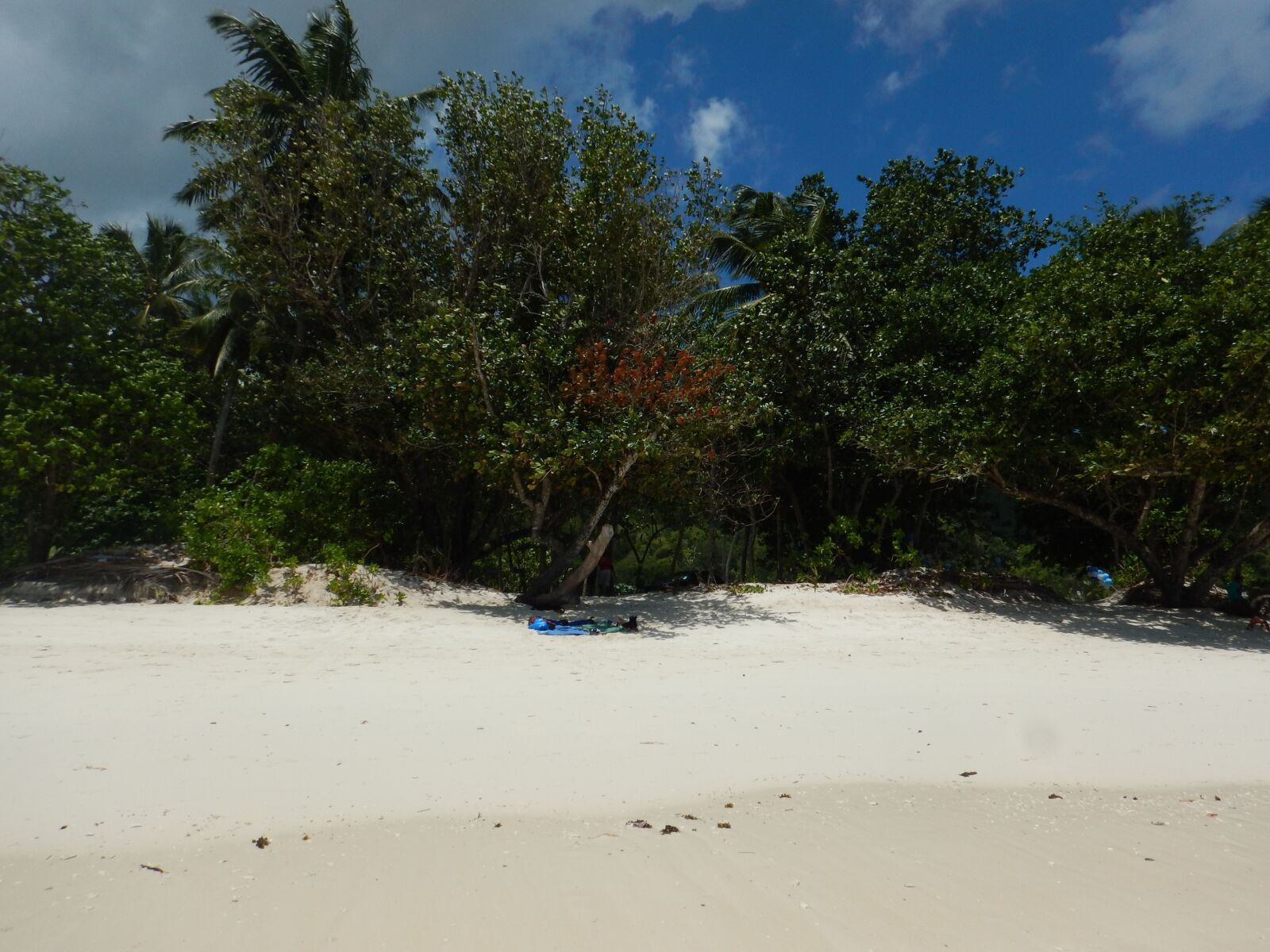 """Nikon Coolpix AW120 sample photo. """"Beach, sommer, nature"""" photography"""