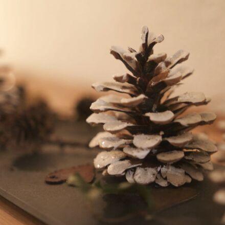 decoration, pine, cone, snow, Canon EOS 1100D
