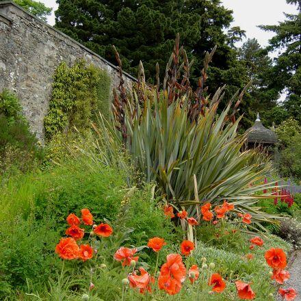 bodnant, gardens, wales, Sony DSC-P10