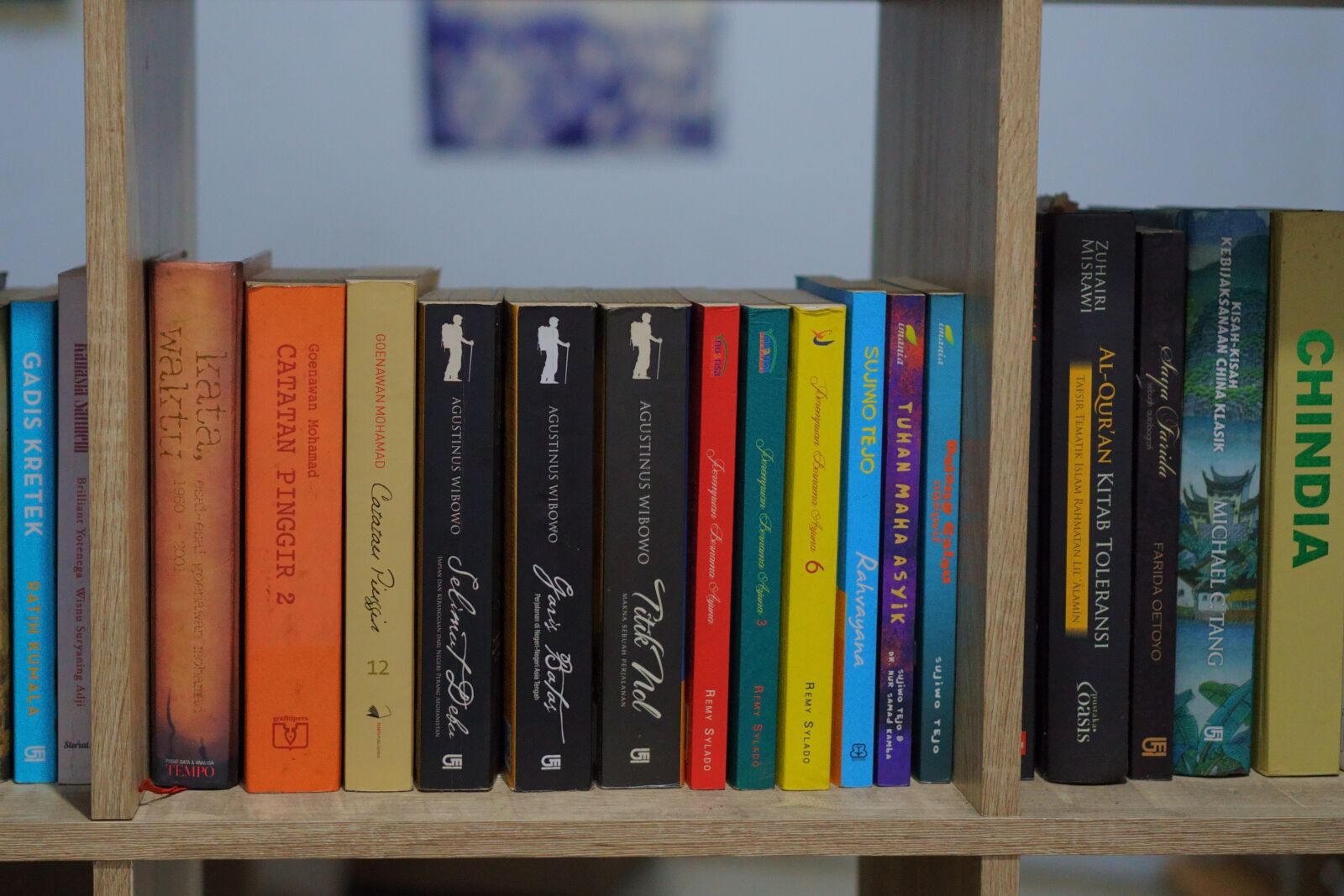"Sony a6400 sample photo. ""Books, shall, read"" photography"