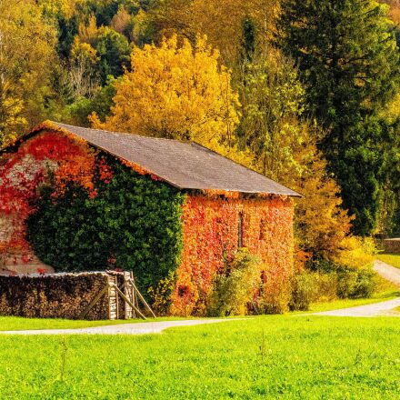 barn, countryside, autumn, Panasonic DMC-GH4