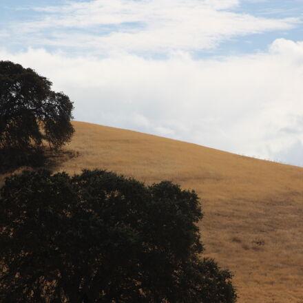 barren, hill, landscape, lonely, Canon EOS DIGITAL REBEL XSI