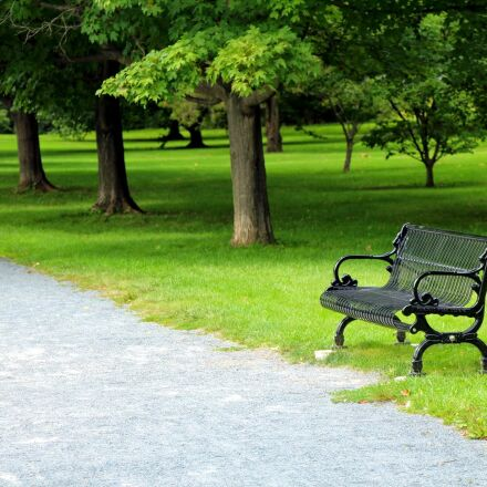 bench, park, path, Canon EOS REBEL T4I