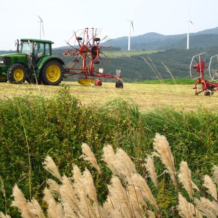 pasture, tractor, japanese pampas, Canon IXY 200F