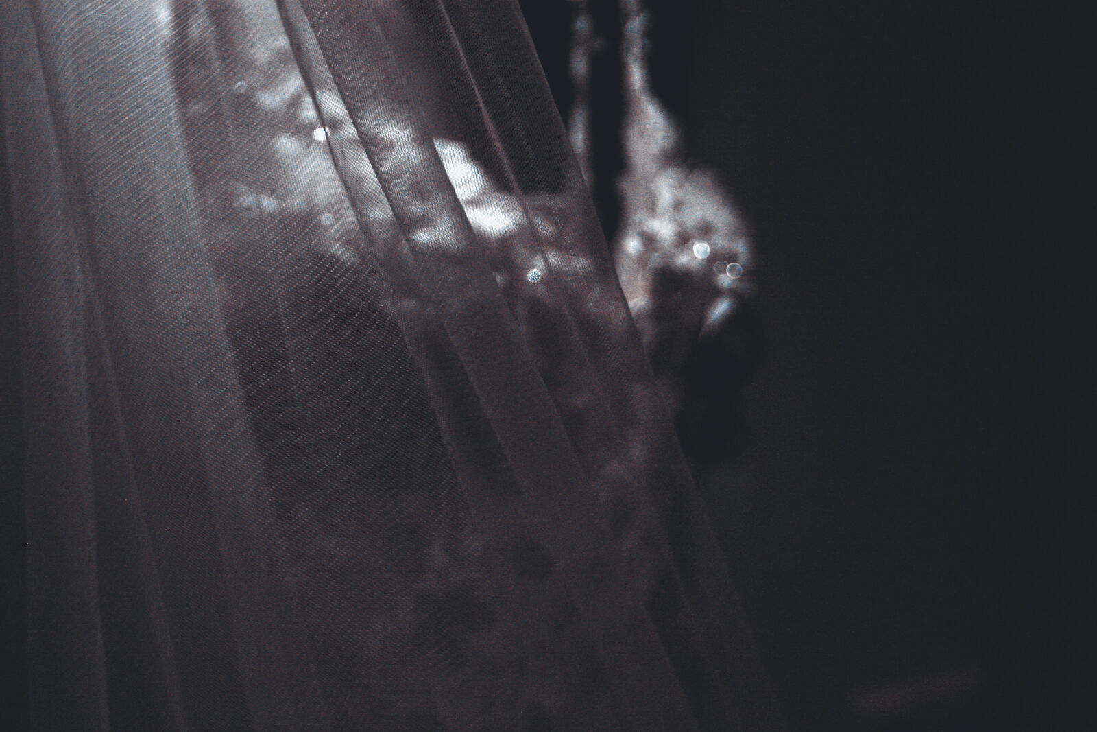 "Canon EF 35-80mm f/4-5.6 USM sample photo. ""Harmony, wedding, wedding, dress"" photography"