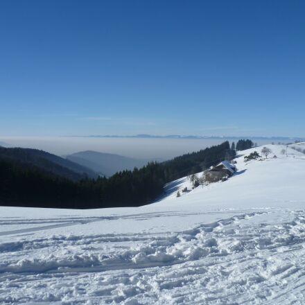 vosges, snow, winter, Panasonic DMC-FS10