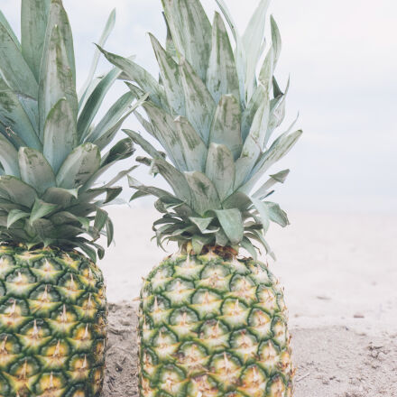 beach, beachlife, fruit, pineapple, Sony ILCE-7M2