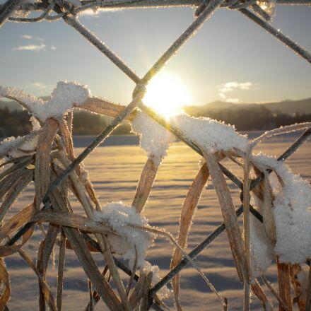 snow, sunrise, fence, Nikon COOLPIX S225