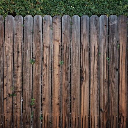brown, wooden, fence, Fujifilm X-E2