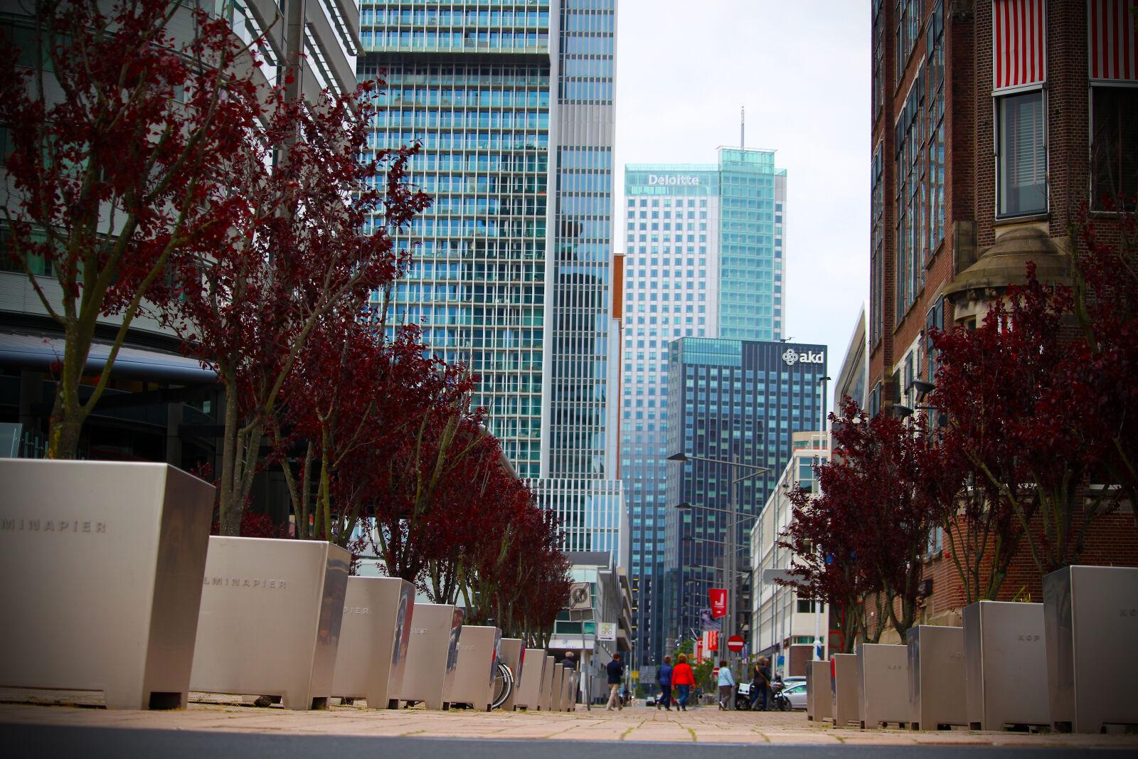 "Canon EOS 100D (EOS Rebel SL1 / EOS Kiss X7) sample photo. ""Architecture, building, city, cityscape"" photography"