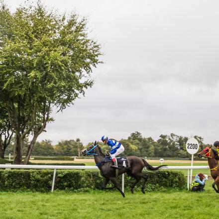 horses, jockeys, racing, Canon EOS 7D