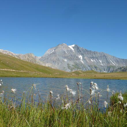 mountain, lake, flower, Panasonic DMC-ZS3