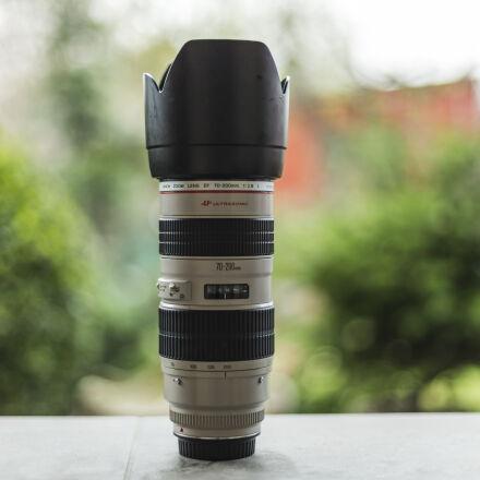 , Canon EOS-1D X