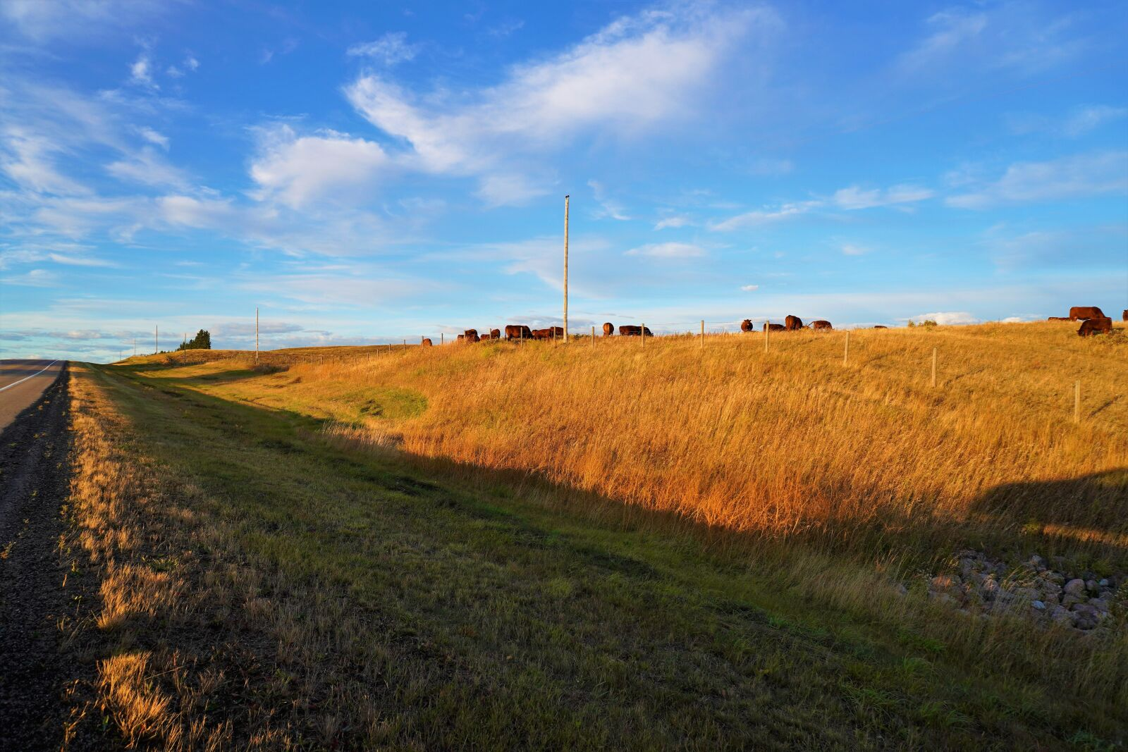 "Sony a6400 sample photo. ""Beautiful, rural alberta fall"" photography"