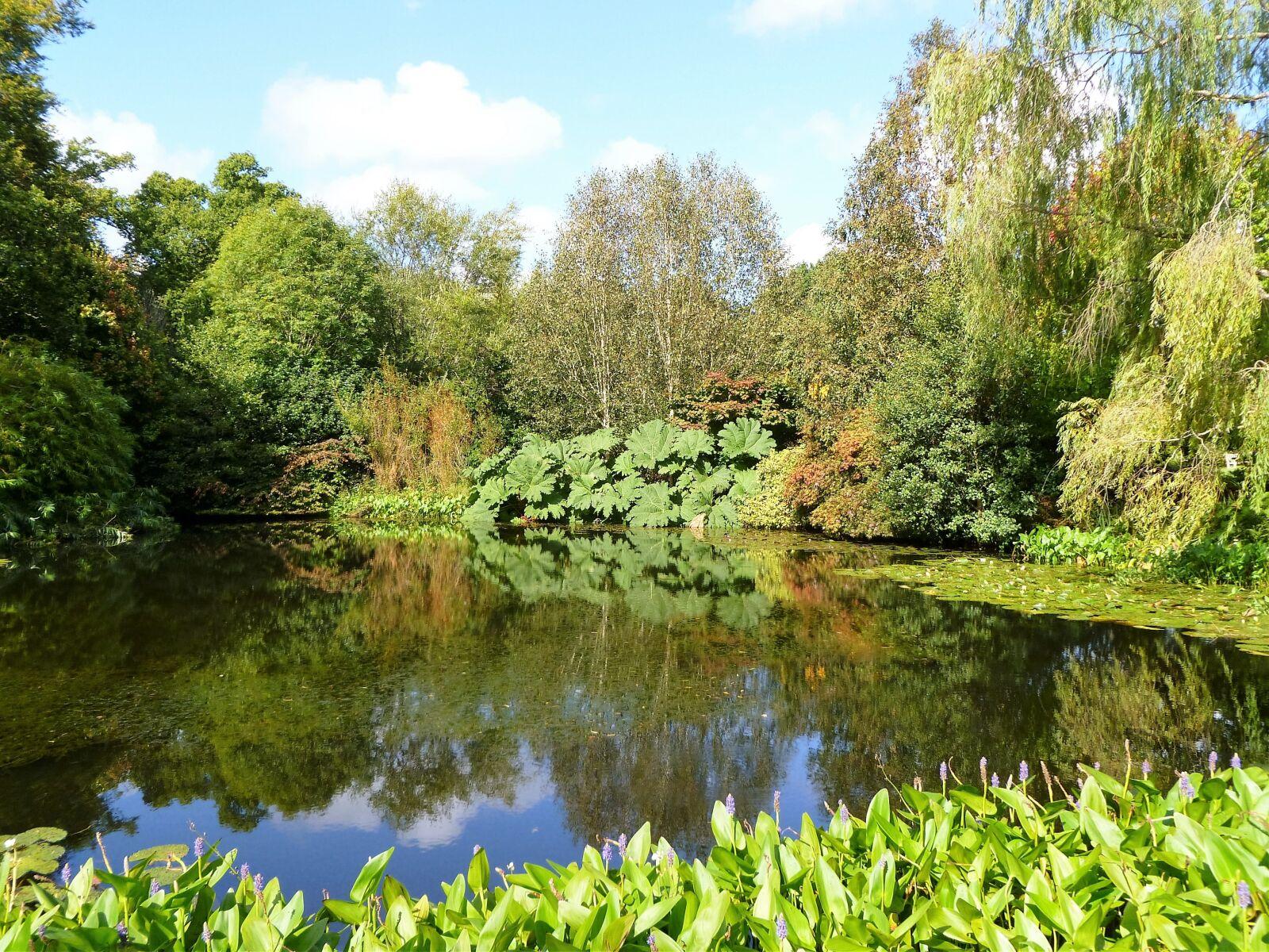 """Panasonic DMC-FH20 sample photo. """"English garden, water, garden"""" photography"""