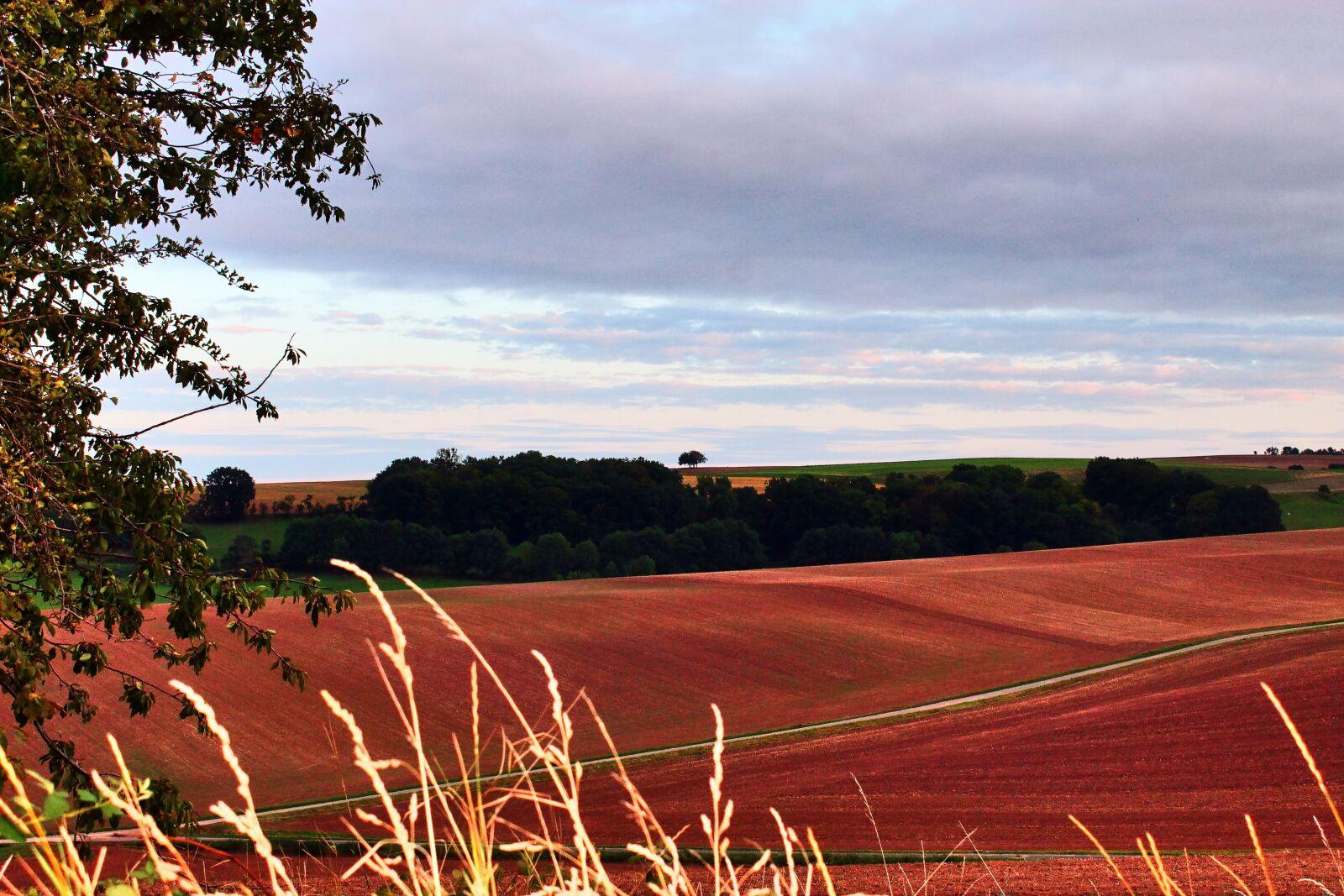 "Canon EOS 1100D (EOS Rebel T3 / EOS Kiss X50) sample photo. ""Eifel, autumn colours, fields"" photography"