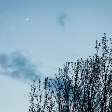 moon, nature, outdoors, sky, Canon EOS 5D MARK II