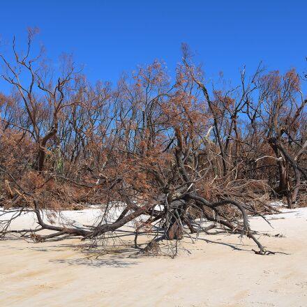 beach, sea, vacations, Canon EOS 750D