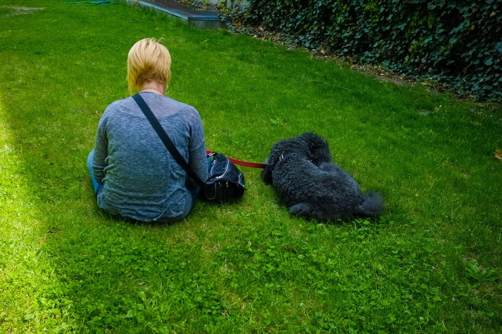 "Fujifilm X-Pro1 sample photo. ""Dog, on, leash, green"" photography"
