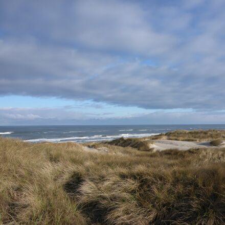 denmark, henne strand, dunes, Panasonic DMC-FT5